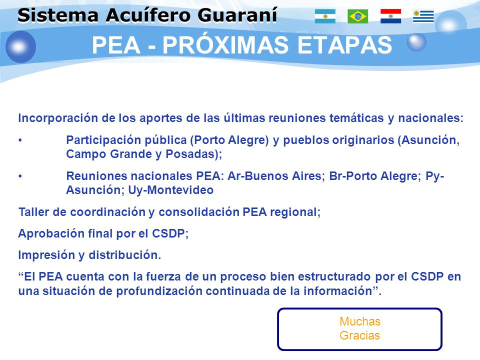 PEA - PRÓXIMAS ETAPAS Incorporación de los aportes de las últimas reuniones temáticas y nacionales: