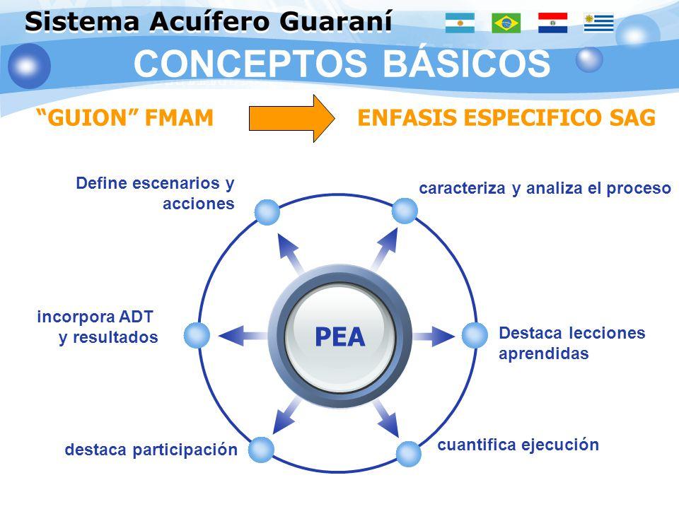 CONCEPTOS BÁSICOS PEA GUION FMAM ENFASIS ESPECIFICO SAG