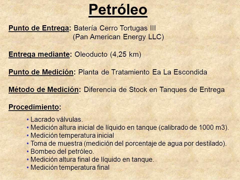 Petróleo Punto de Entrega: Batería Cerro Tortugas III