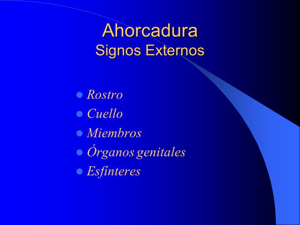 Ahorcadura Signos Externos