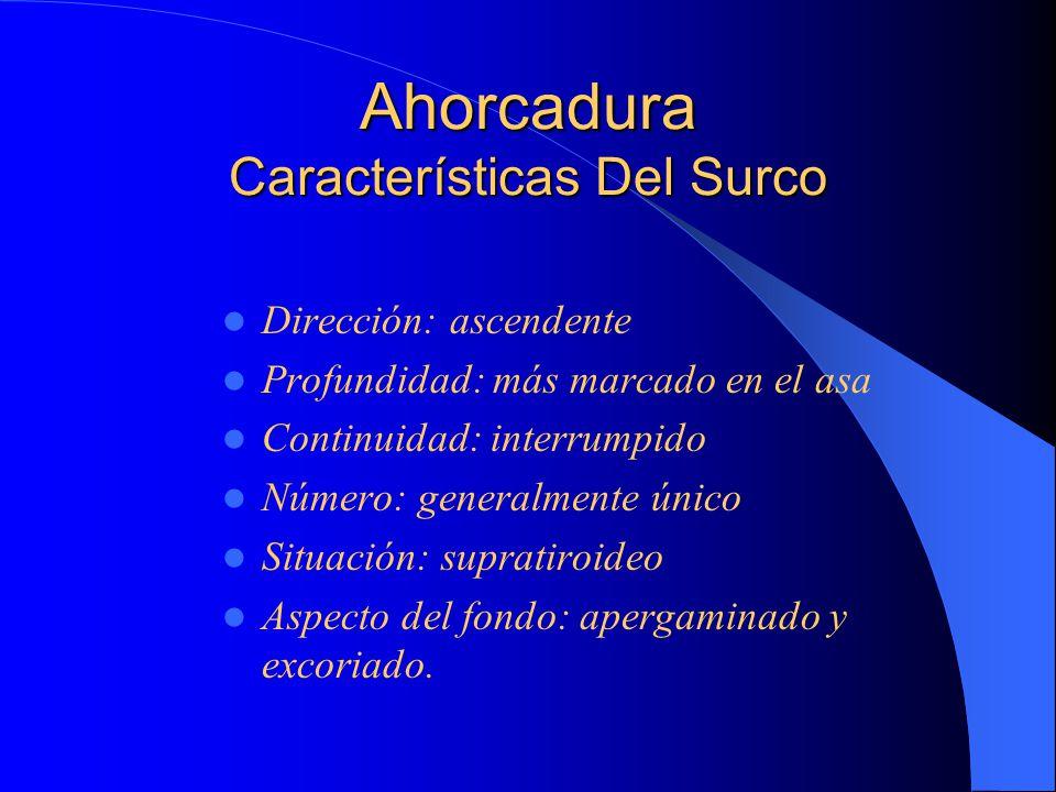 Ahorcadura Características Del Surco
