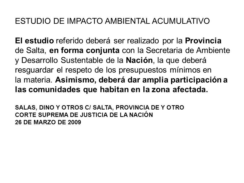ESTUDIO DE IMPACTO AMBIENTAL ACUMULATIVO