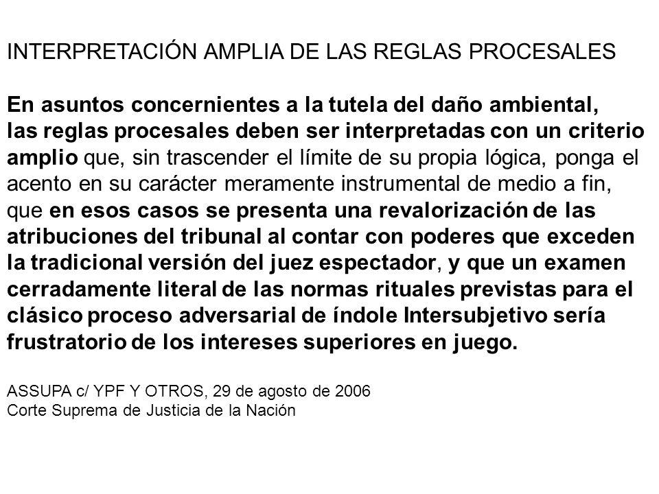 INTERPRETACIÓN AMPLIA DE LAS REGLAS PROCESALES
