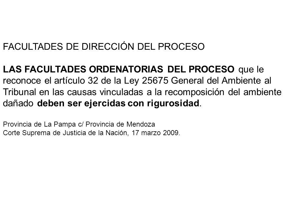 FACULTADES DE DIRECCIÓN DEL PROCESO