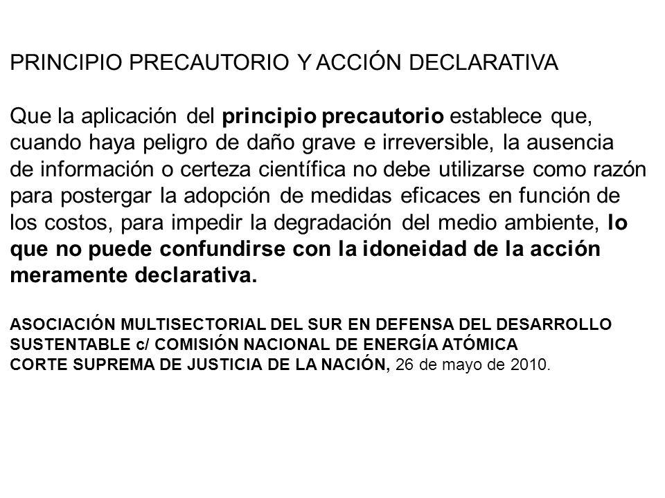 PRINCIPIO PRECAUTORIO Y ACCIÓN DECLARATIVA