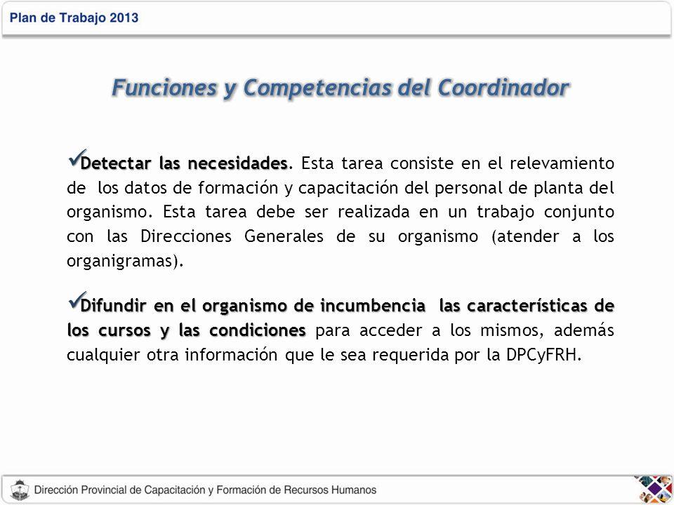 Funciones y Competencias del Coordinador