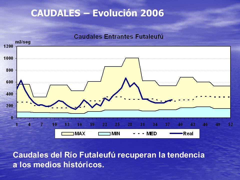CAUDALES – Evolución 2006 Caudales del Río Futaleufú recuperan la tendencia a los medios históricos.