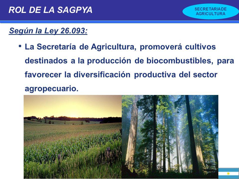 ROL DE LA SAGPYA Según la Ley 26.093: