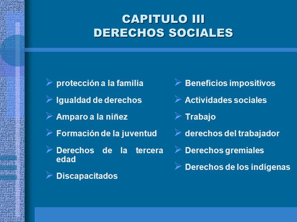 CAPITULO III DERECHOS SOCIALES