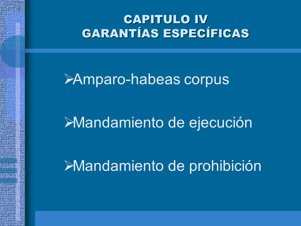 CAPITULO IV GARANTÍAS ESPECÍFICAS