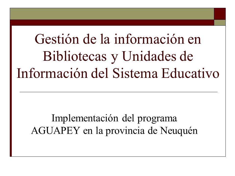 Implementación del programa AGUAPEY en la provincia de Neuquén