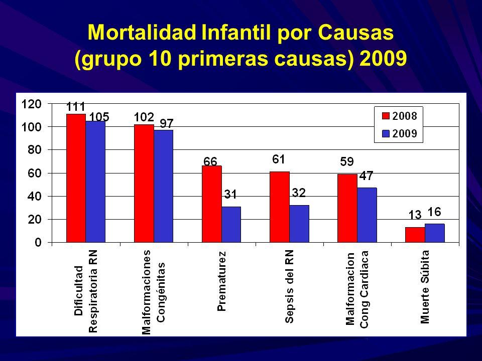 Mortalidad Infantil por Causas (grupo 10 primeras causas) 2009