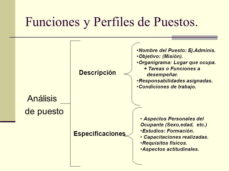 Funciones y Perfiles de Puestos.