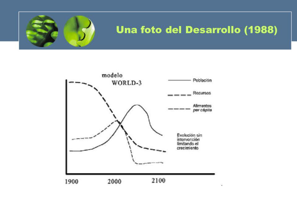 Una foto del Desarrollo (1988)