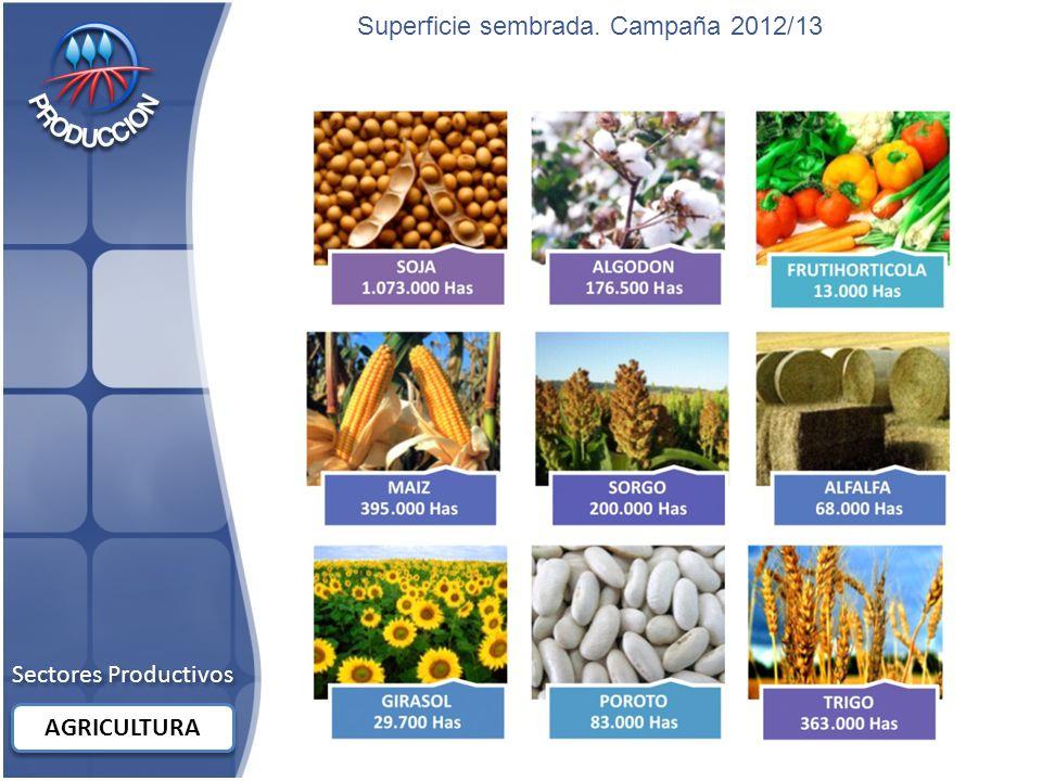 Superficie sembrada. Campaña 2012/13