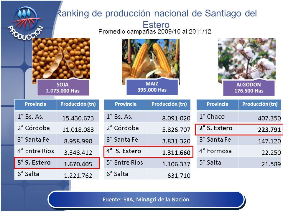 Ranking de producción nacional de Santiago del Estero