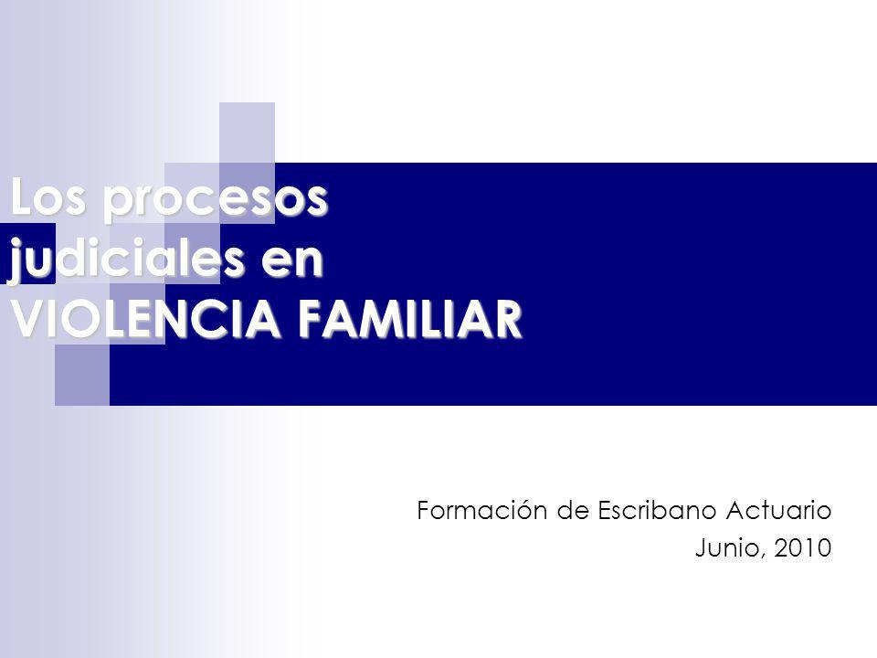 Los procesos judiciales en VIOLENCIA FAMILIAR