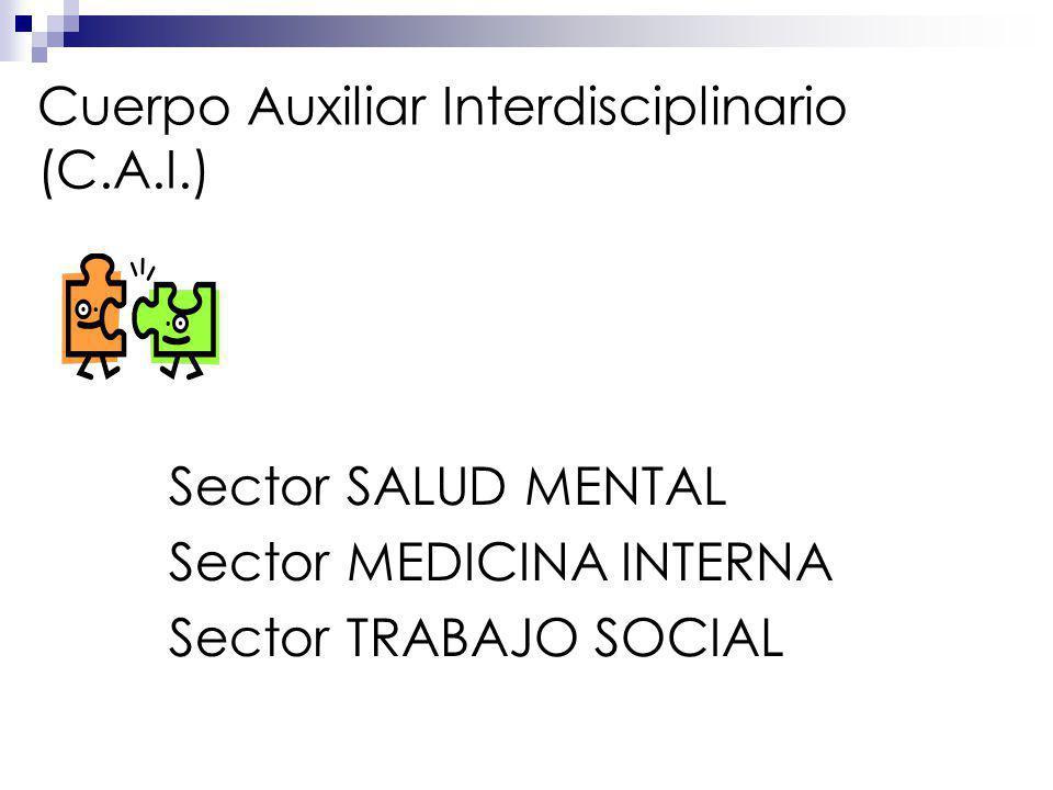 Cuerpo Auxiliar Interdisciplinario (C.A.I.)