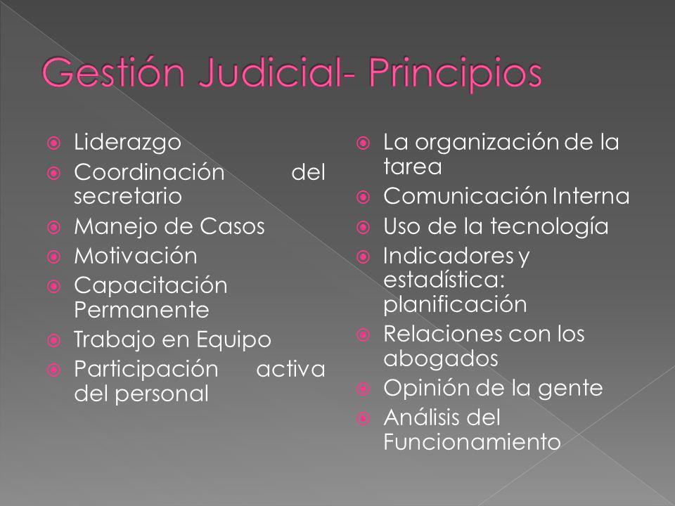 Gestión Judicial- Principios