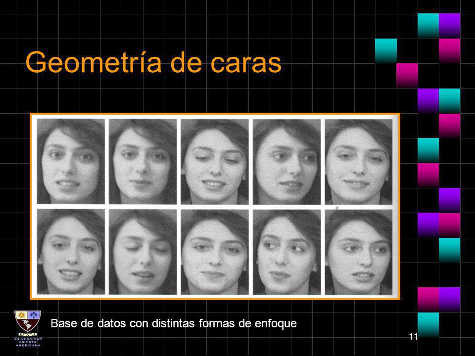 Geometría de caras Base de datos con distintas formas de enfoque