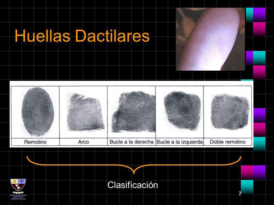 Huellas Dactilares Clasificación