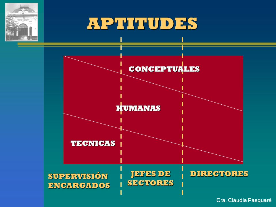APTITUDES HUMANAS CONCEPTUALES HUMANAS TECNICAS JEFES DE SECTORES