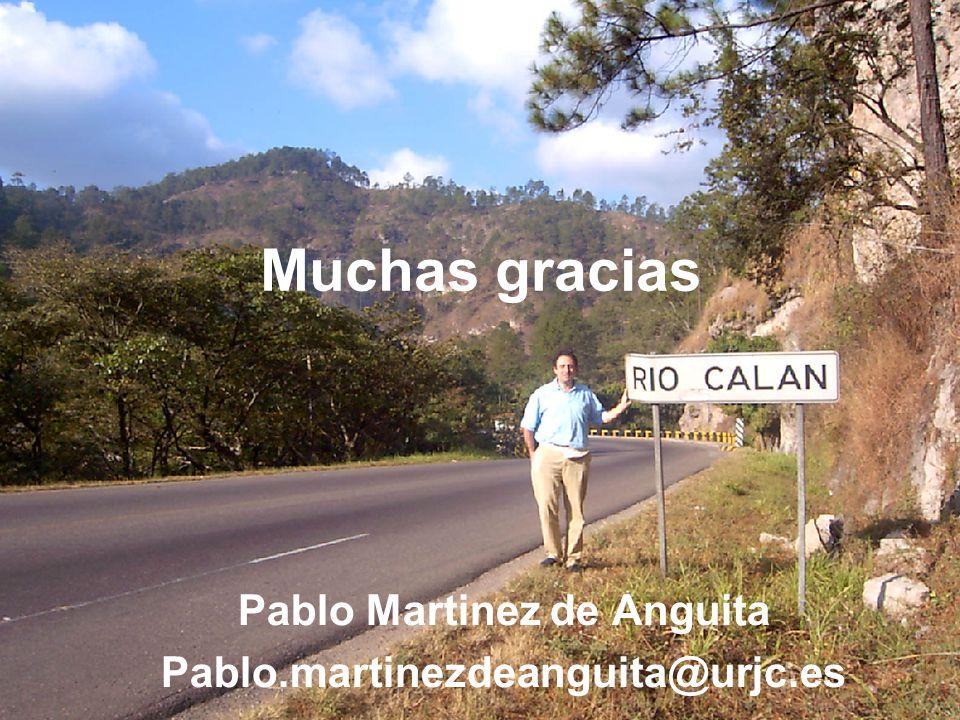 Pablo Martinez de Anguita