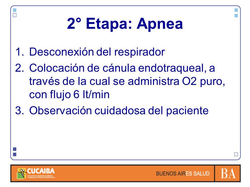 2° Etapa: Apnea Desconexión del respirador
