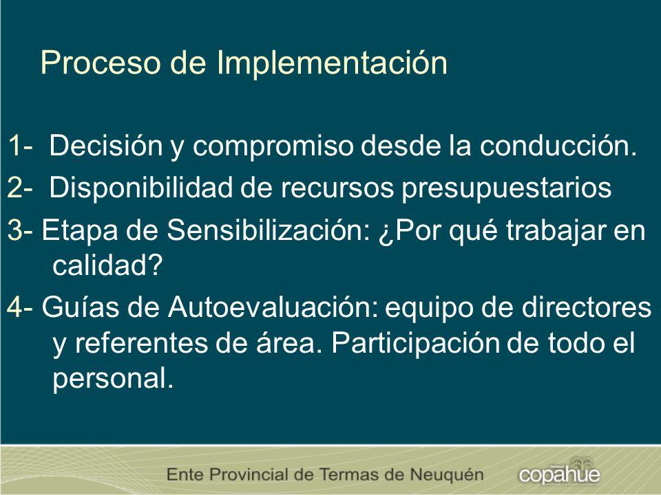 Proceso de Implementación