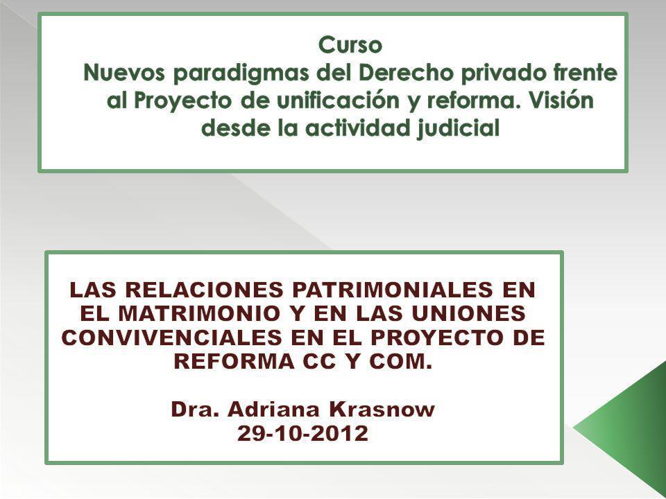 Curso Nuevos paradigmas del Derecho privado frente al Proyecto de unificación y reforma. Visión desde la actividad judicial