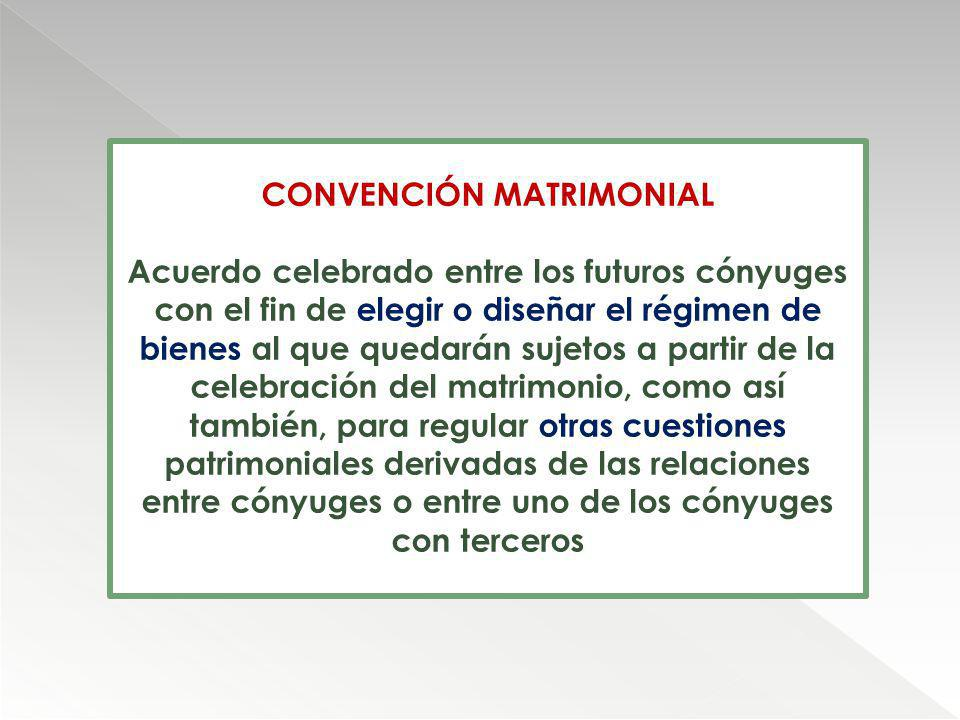 CONVENCIÓN MATRIMONIAL
