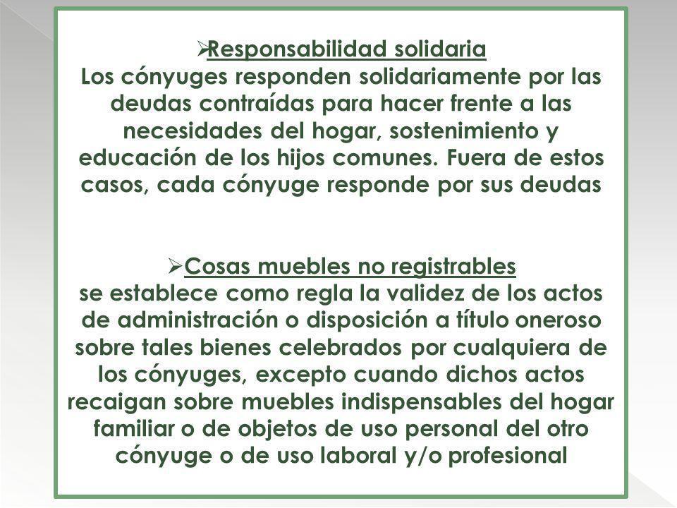 Responsabilidad solidaria Cosas muebles no registrables