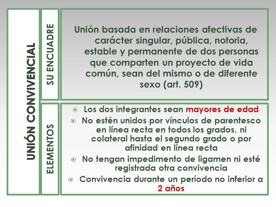 UNIÓN CONVIVENCIAL SU ENCUADRE.