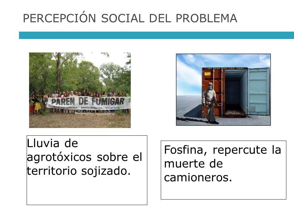 PERCEPCIÓN SOCIAL DEL PROBLEMA