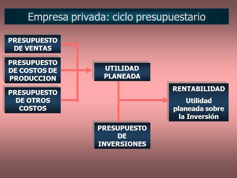 Empresa privada: ciclo presupuestario