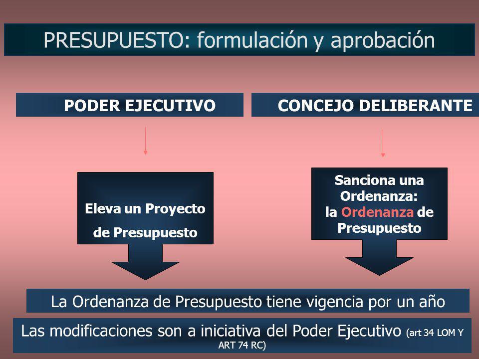 Sanciona una Ordenanza: la Ordenanza de Presupuesto