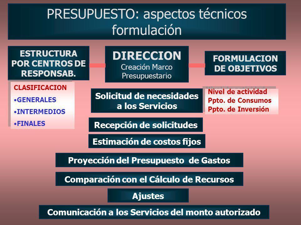 PRESUPUESTO: aspectos técnicos formulación