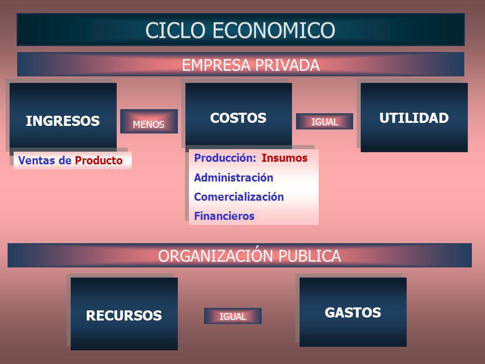 CICLO ECONOMICO EMPRESA PRIVADA ORGANIZACIÓN PUBLICA INGRESOS COSTOS