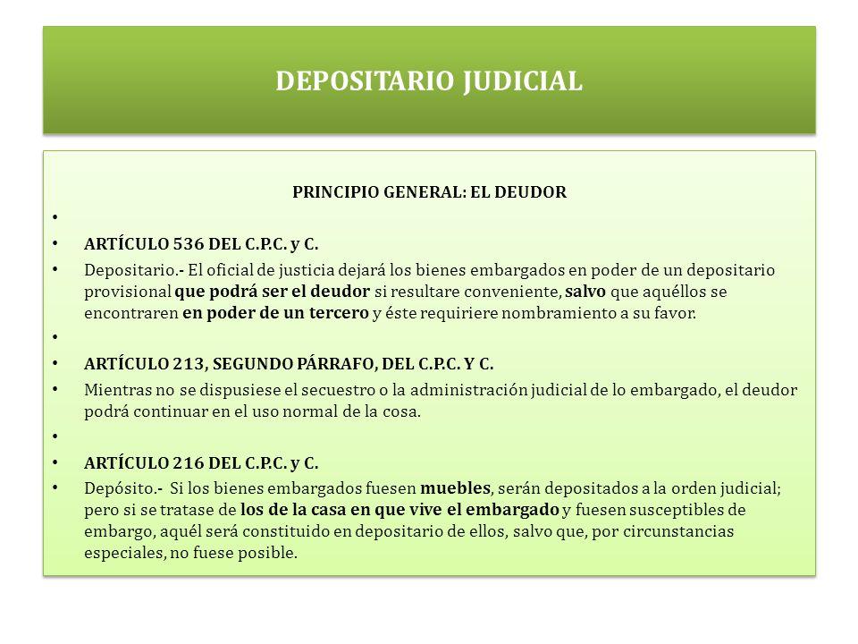 PRINCIPIO GENERAL: EL DEUDOR