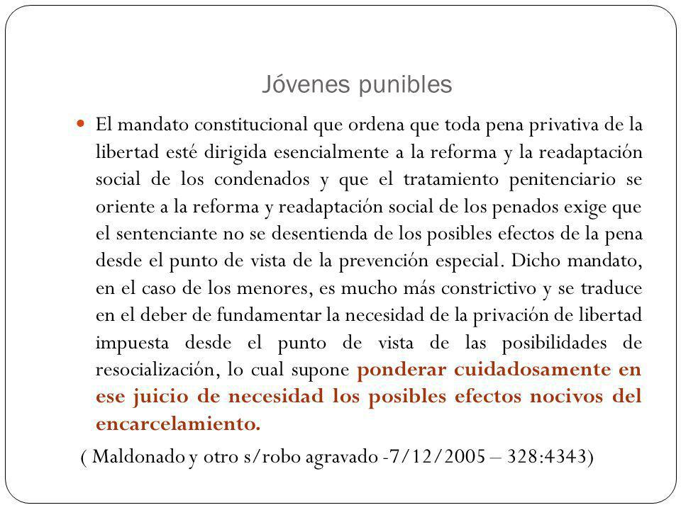 Jóvenes punibles