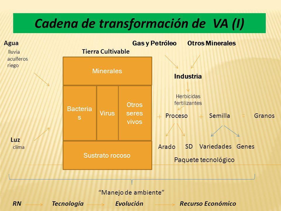 Cadena de transformación de VA (I)