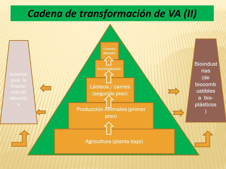Cadena de transformación de VA (II)