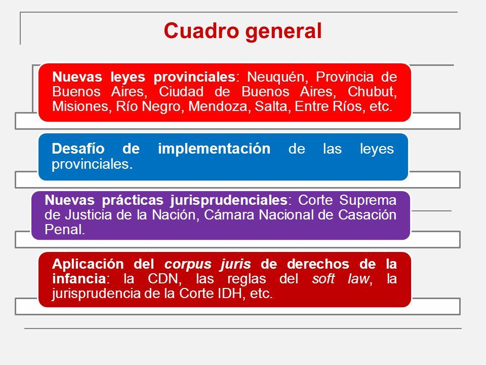 Cuadro general Desafío de implementación de las leyes provinciales.