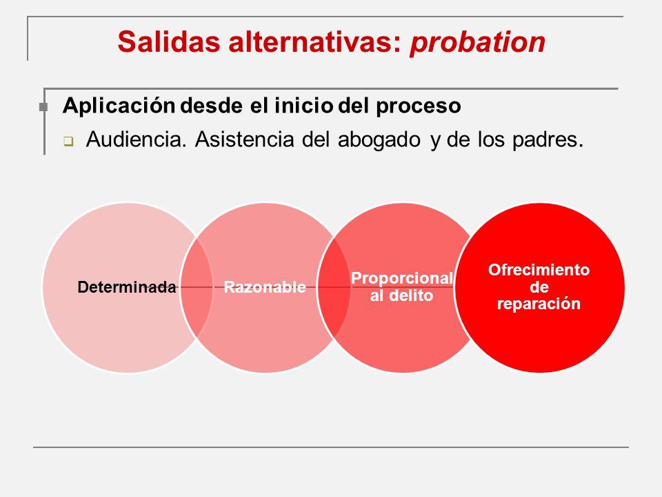 Salidas alternativas: probation