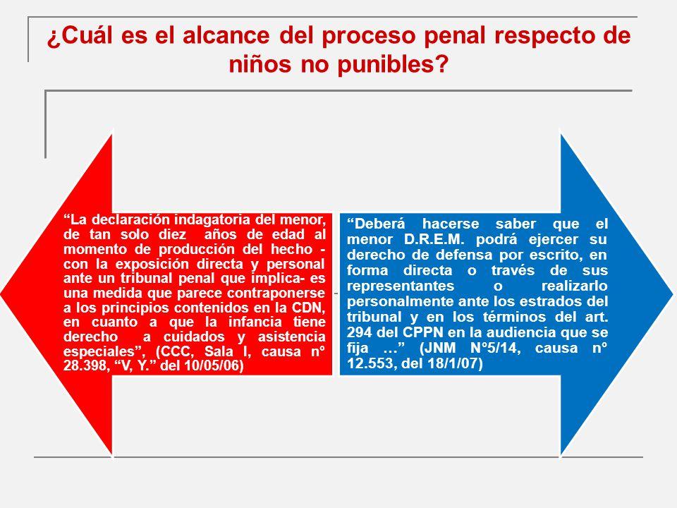 ¿Cuál es el alcance del proceso penal respecto de niños no punibles
