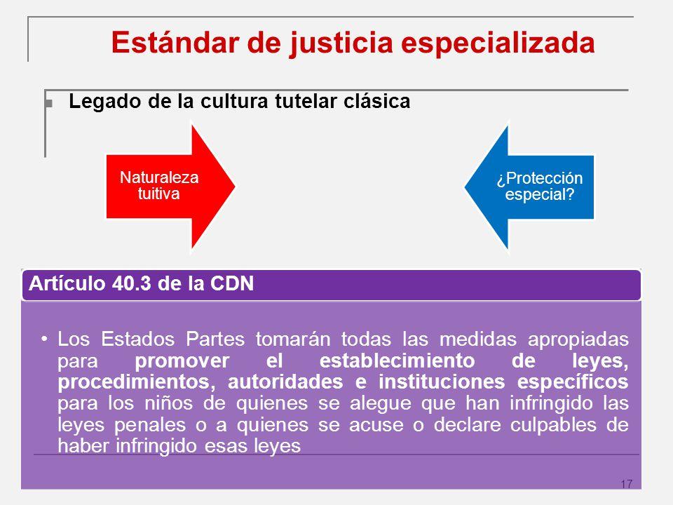 Estándar de justicia especializada