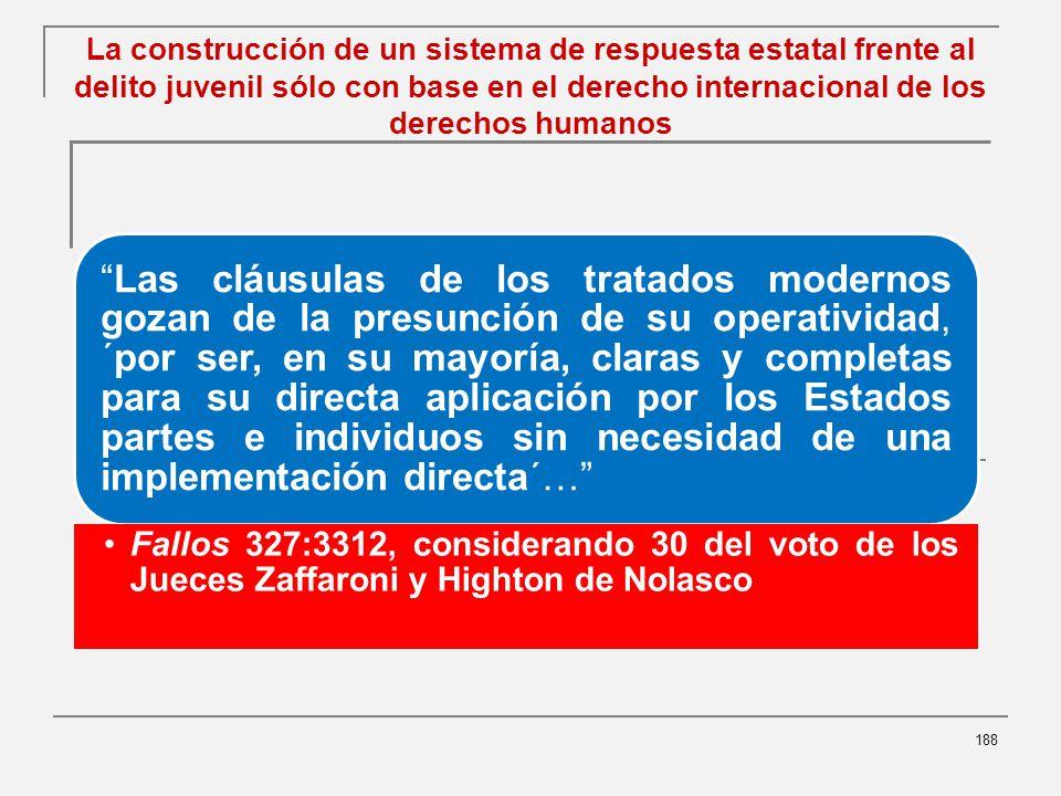 La construcción de un sistema de respuesta estatal frente al delito juvenil sólo con base en el derecho internacional de los derechos humanos