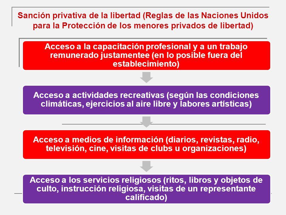 Sanción privativa de la libertad (Reglas de las Naciones Unidos para la Protección de los menores privados de libertad)