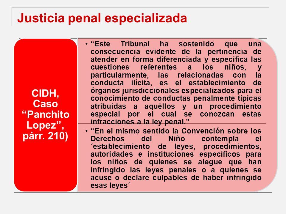 Justicia penal especializada
