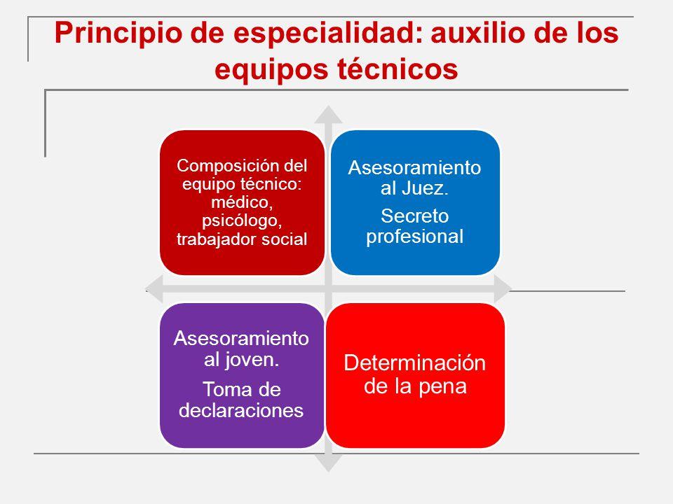 Principio de especialidad: auxilio de los equipos técnicos